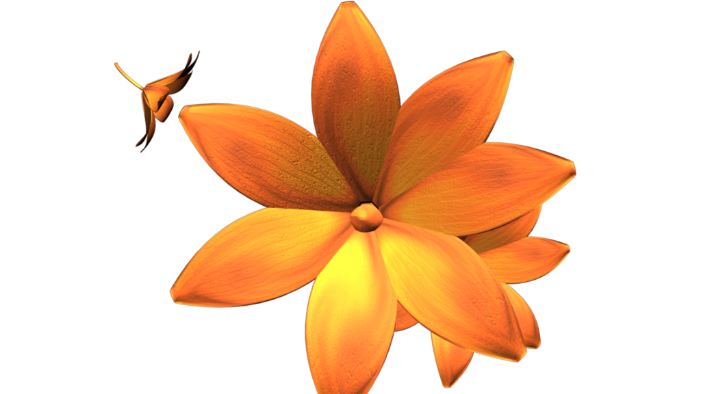 Nature Video Clipart of Orange Flowers